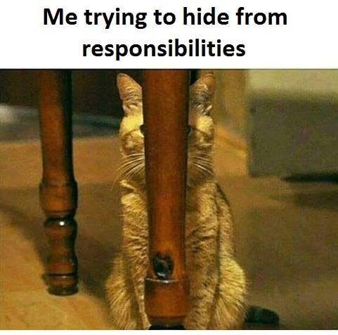 hide from responsibilities