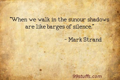 poetry,shadows,silence