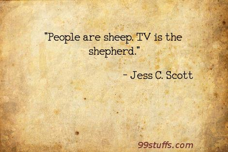 entertainment,humor,hype,media,mindlessness,sheep,sheeple,television